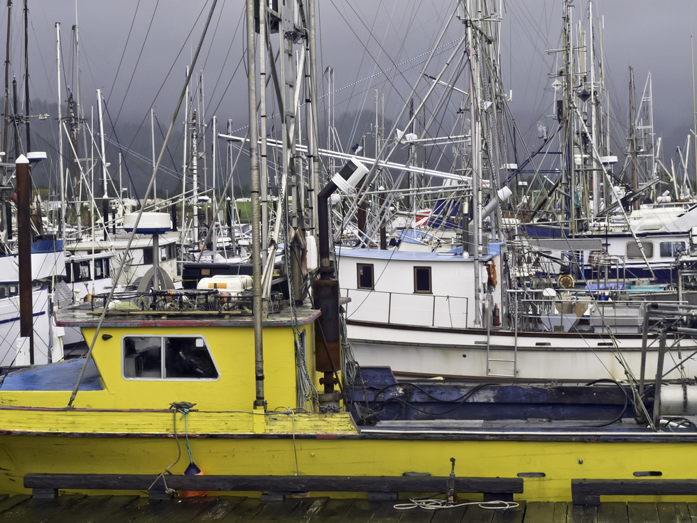 Harbor full of commercial and charter fishing vessels on a stormy day in Garibaldi, Oregon, USA